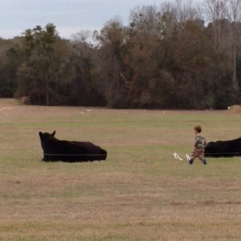 This kid tried to jump on a cow's back, and shockingly, it did not go well