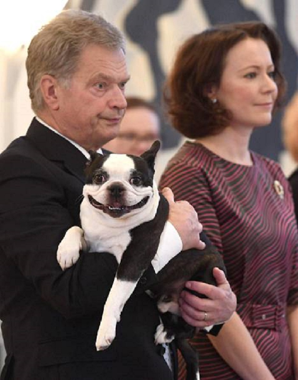 We need to talk about the Finnish president's dog Lennu, aka the most intensely adorable dog on the planet