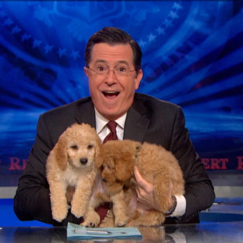 Stephen Colbert and Aubrey Plaza came up with the best way to get rescue dogs adopted ever