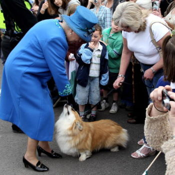 Even Queen Elizabeth II can't resist sharing food with her adorable corgis