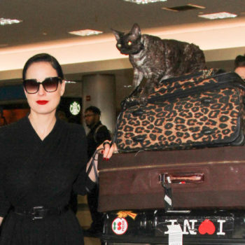 Dita Von Teese has the world's chillest cat who rides on top of her luggage at LAX