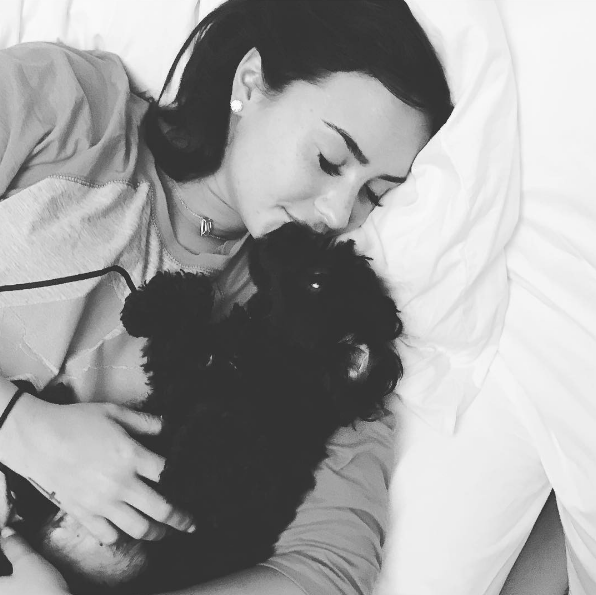 Demi Lovato's dog Batman joined Instagram, and he's a natural social media star