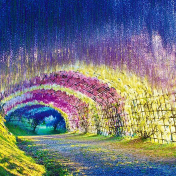 10 flower tunnels that feel like escaping into a fairy tale
