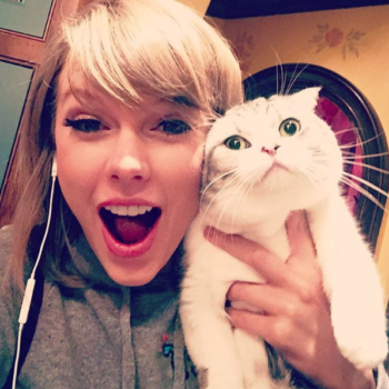 The SSPCA is not happy with Taylor Swift's purebred cats, and here's why