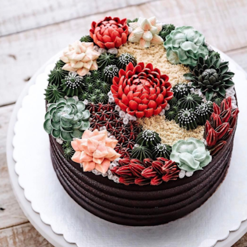 Succulent cakes are the new dessert trend — and our new dream wedding cake
