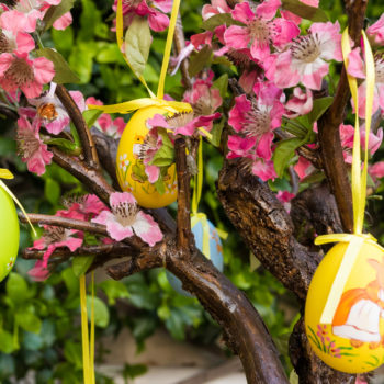 Twitter asks, are you ever too old for an Easter Egg hunt?