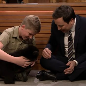 """Steve Irwin's 13-year-old son Robert playing with baby bears on """"The Tonight Show"""" is the most charming thing we've seen this week"""