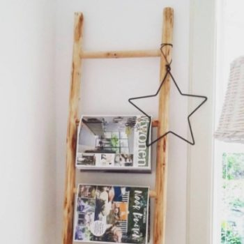 People are putting ladders in their bathrooms and it's very confusing