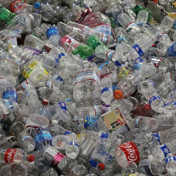 Apparently, most of our water bottles are NOT being recycled after all