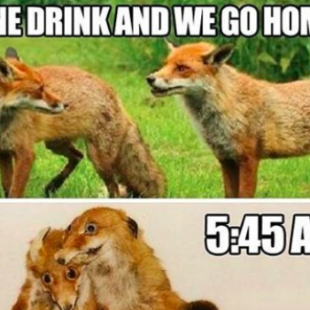 15 memes you need to share with your BFF right now