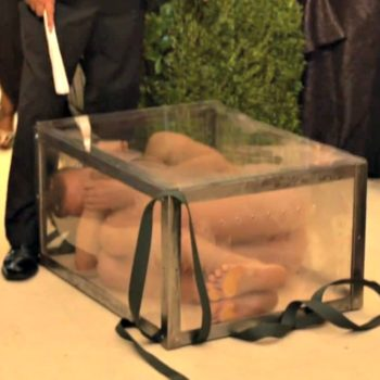 A naked man showed up at the Met Gala in a glass box, because, well, no one knows why