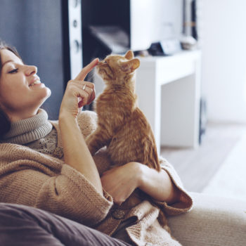 So cats might actually enjoy human companionship after all