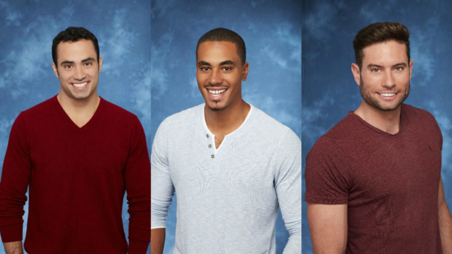 "11 wild, outrageous, and NSFW answers from the brand new ""The Bachelorette"" contestants"