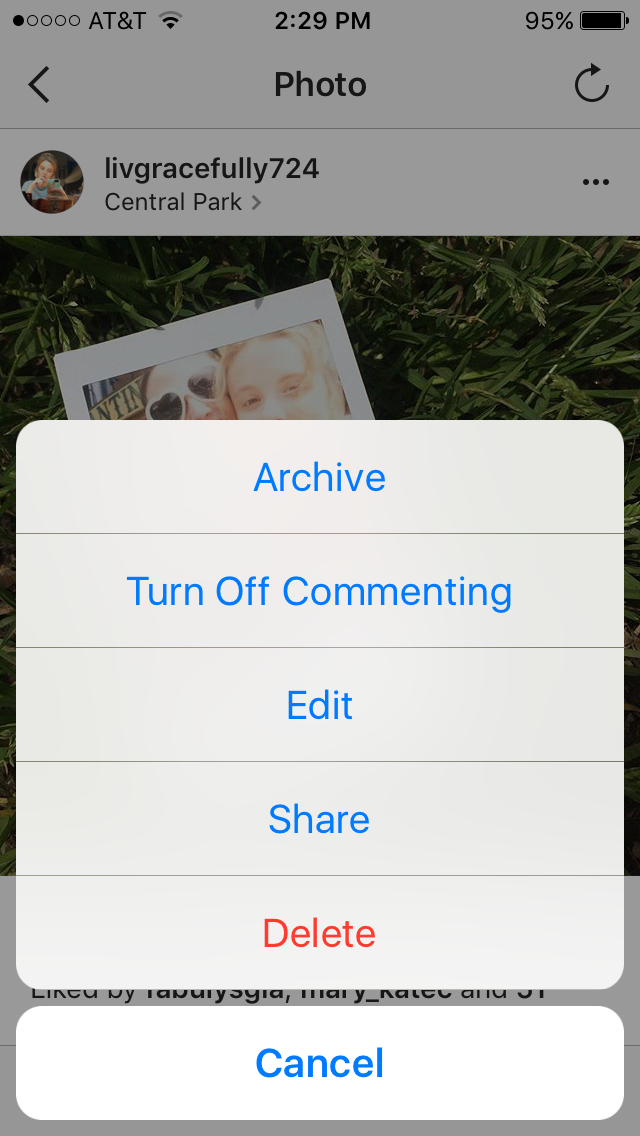 Image of Instagram Archive