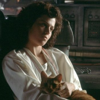 """A recut """"Alien"""" trailer features cats, and who knew space travel could be so adorable?"""