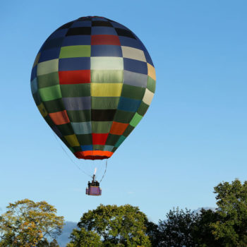 This hot air balloon proposal ended in a crash landing