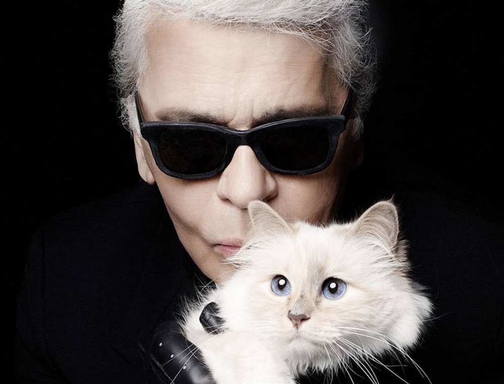 Iconic fashion designer Karl Lagerfeld and ModelCo are collaborating on a makeup line
