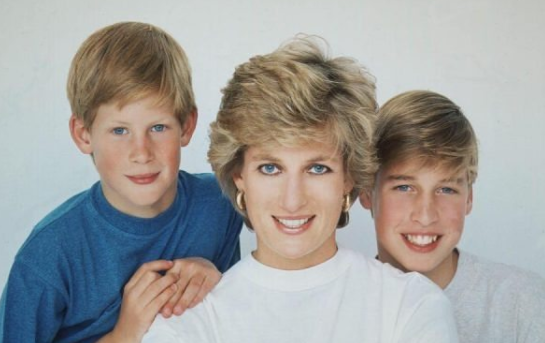 """Prince William opens up in a new documentary about his mom, saying, """"We couldn't protect her"""""""