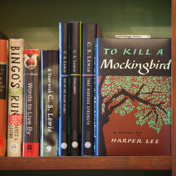 """To Kill a Mockingbird"" is being re-released as a graphic novel, and our literary hearts are bursting with joy"