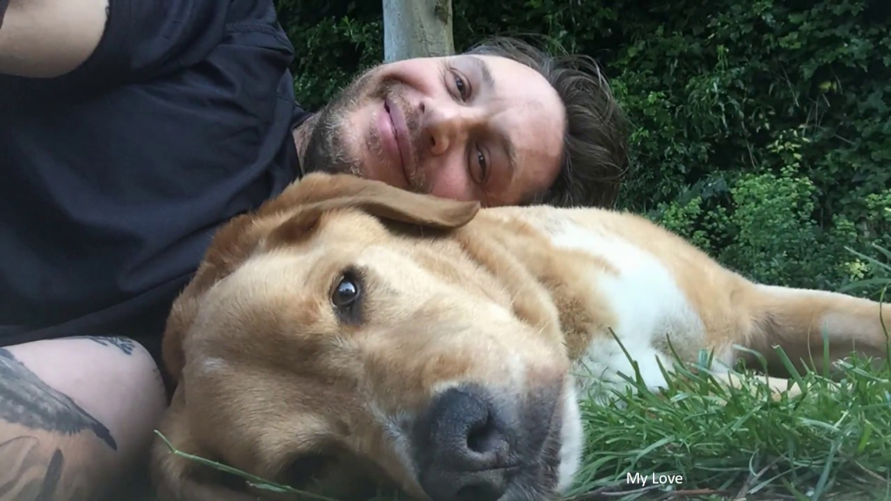 Tom Hardy's dog died, and he just posted the tribute to end all tributes