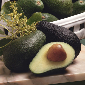 Avocado art is the latest Instagram trend that'll soon be all over your feed