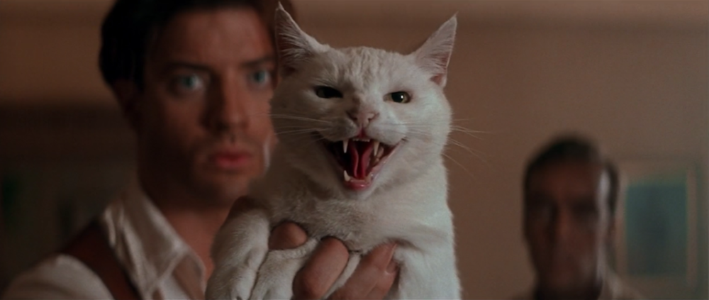 "9 fun things you might have forgotten about the OG ""Mummy,"" like Brendan Fraser scaring off Imhotep with a cat"