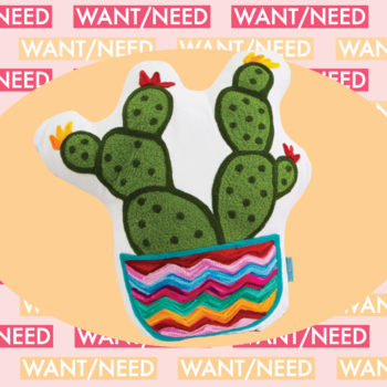 WANT/NEED: A cactus pillow you can get at Forever 21, plus other stuff you'll actually want