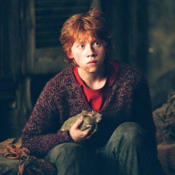 "We might *finally* have an answer for this infuriating ""Harry Potter"" plot hole"