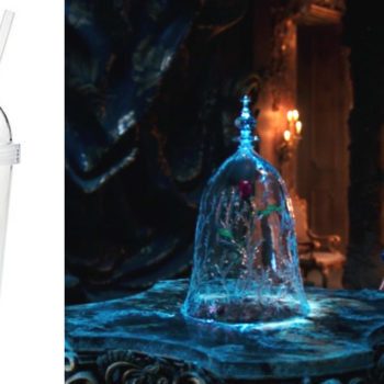 """Try and stay calm, but you can now buy that """"Beauty and the Beast"""" rose cup online"""