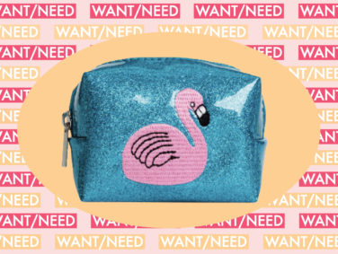 WANT/NEED: A flamingo coin purse to stash your pennies, and more stuff you want to buy