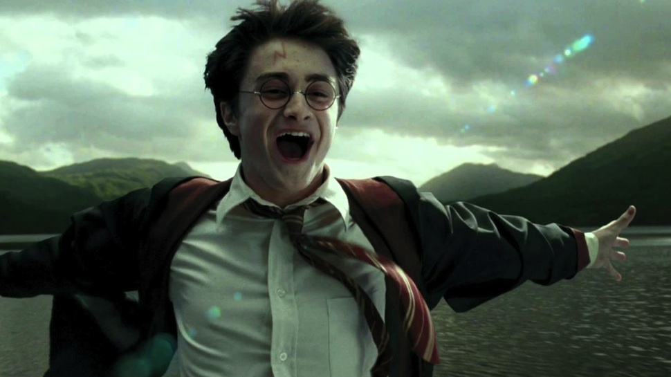 Everything we know is a lie, because there are actually *two* Harry Potters