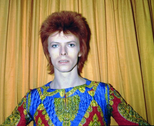 Scientists just named a wasp after David Bowie to honor Ziggy Stardust himself