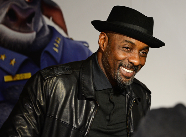 Sorry to break your hearts, but Idris Elba doesn't plan on ever getting married again