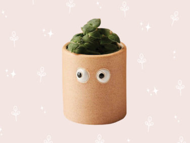 11 pretty planters that'll add whimsy to your windowsill