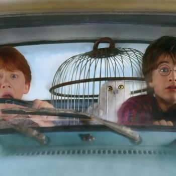 Gas up the flying car, there's a brand new roller coaster coming to Harry Potter World
