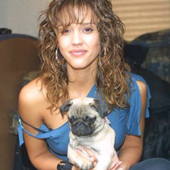 Jessica Alba's beloved dog has died, and she just shared the most heartwarming tribute
