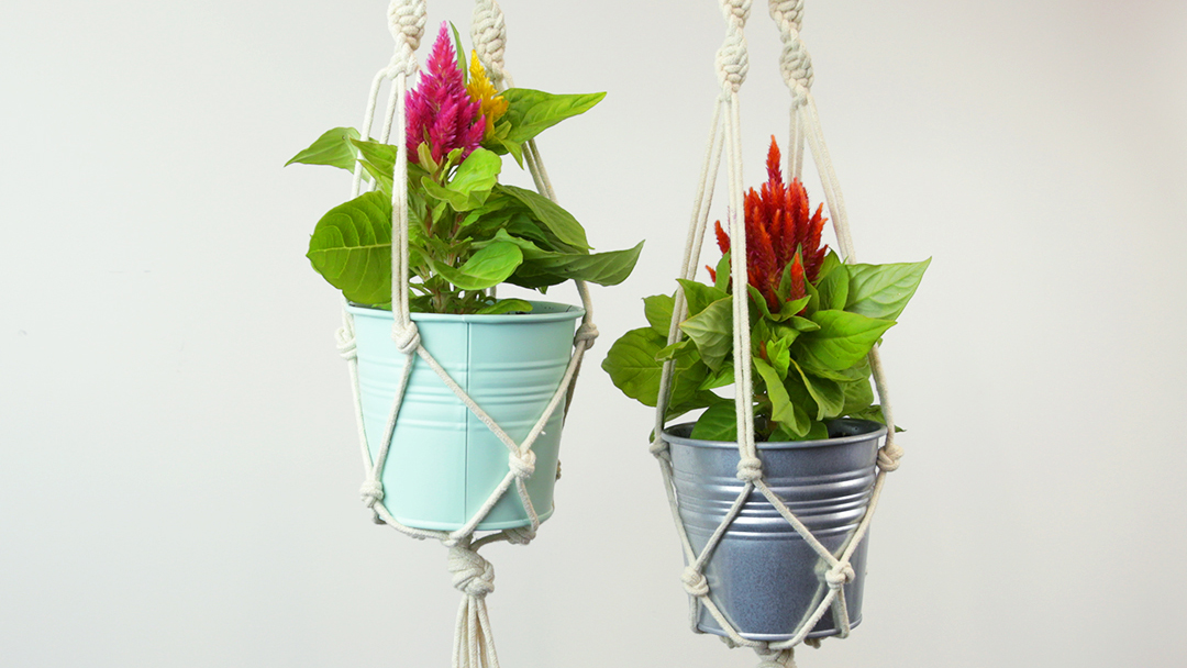 These DIY hanging planters are the perfect way to exercise your green thumb