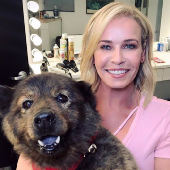 Chelsea Handler's dog Tammy died, and we're sending her all the love