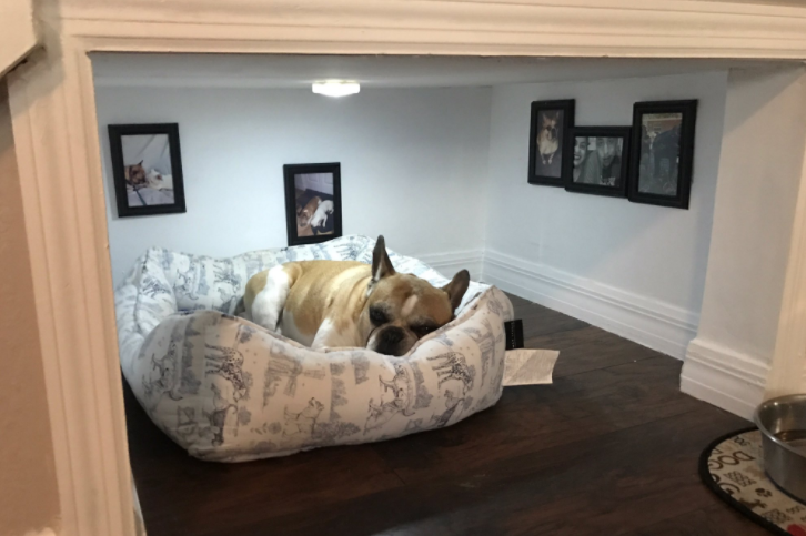 This guy built a whole bedroom for his dog, and it looks cozy as hell
