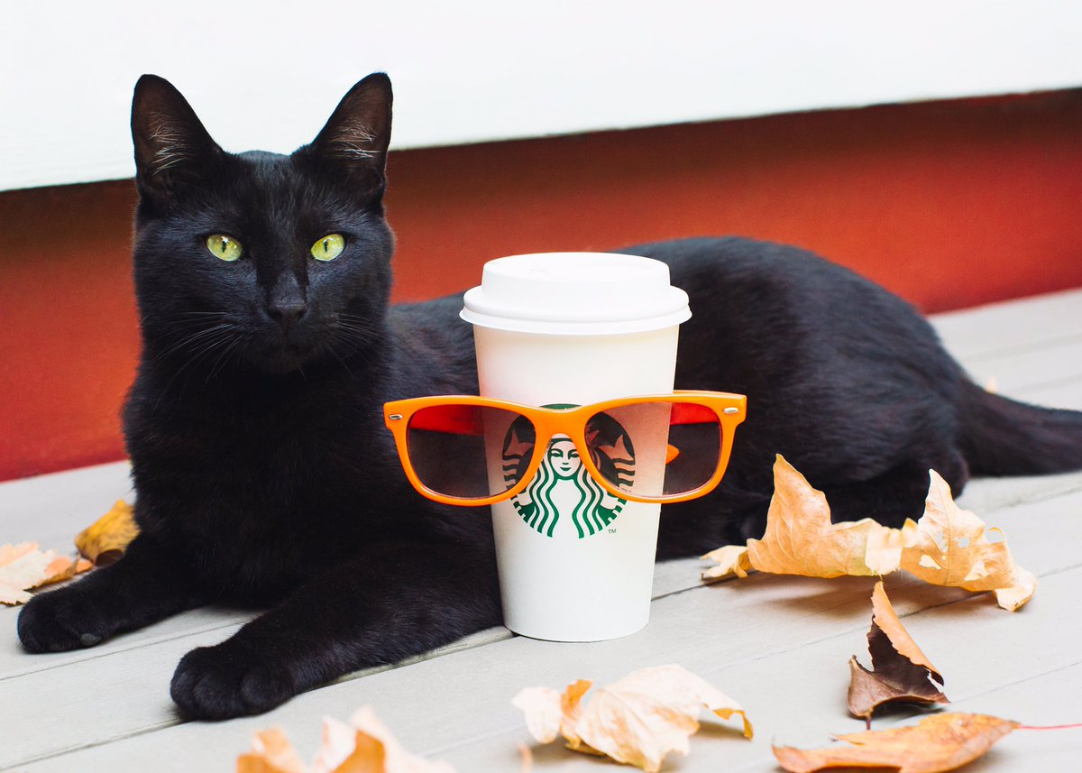 Starbucks is preparing for Pumpkin Spice Latte season — here's how