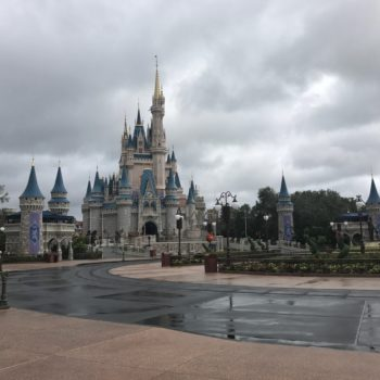 Disney World sustained minimal damage during Hurricane Irma, but the pictures are still scary