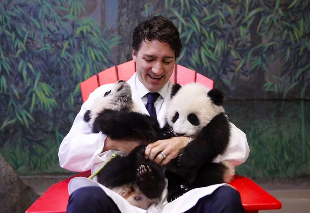 Justin Trudeau holding panda cubs is too much cuteness for one photo