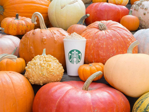 You will soon be able to make Starbucks pumpkin spice lattes in your kitchen, because life is wonderful