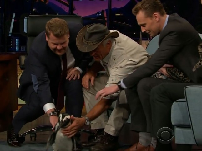 Watch This Video Of Tom Hiddleston Hold A Baby Leopard
