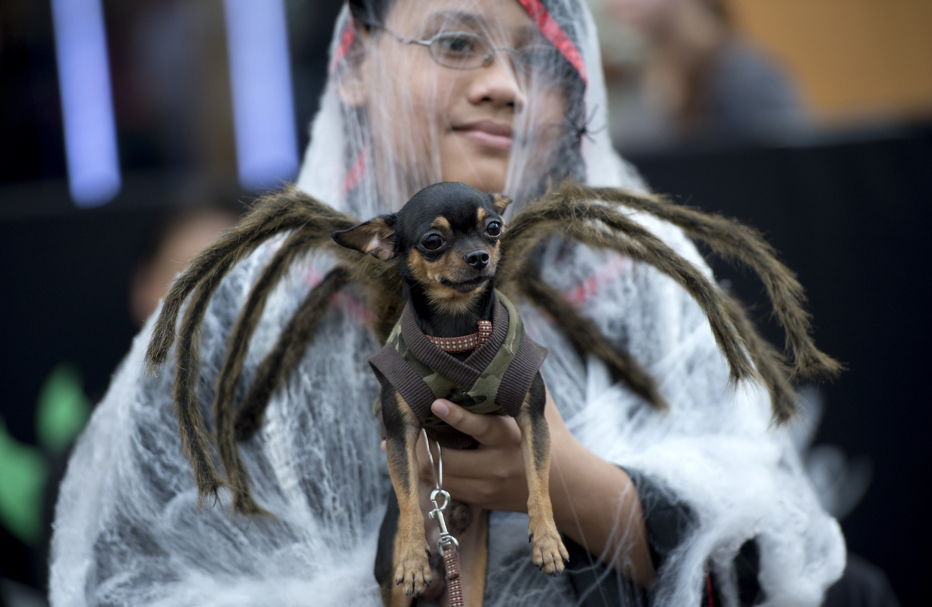PHILIPPINES-ANIMAL-SOCIETY-RELIGION-ALL SOULS DAY