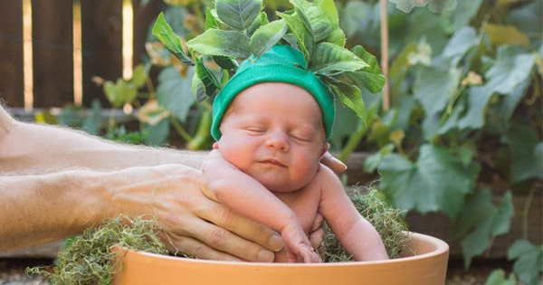 This family's Harry Potter photoshoot with their newborn baby is absolutely hilarious