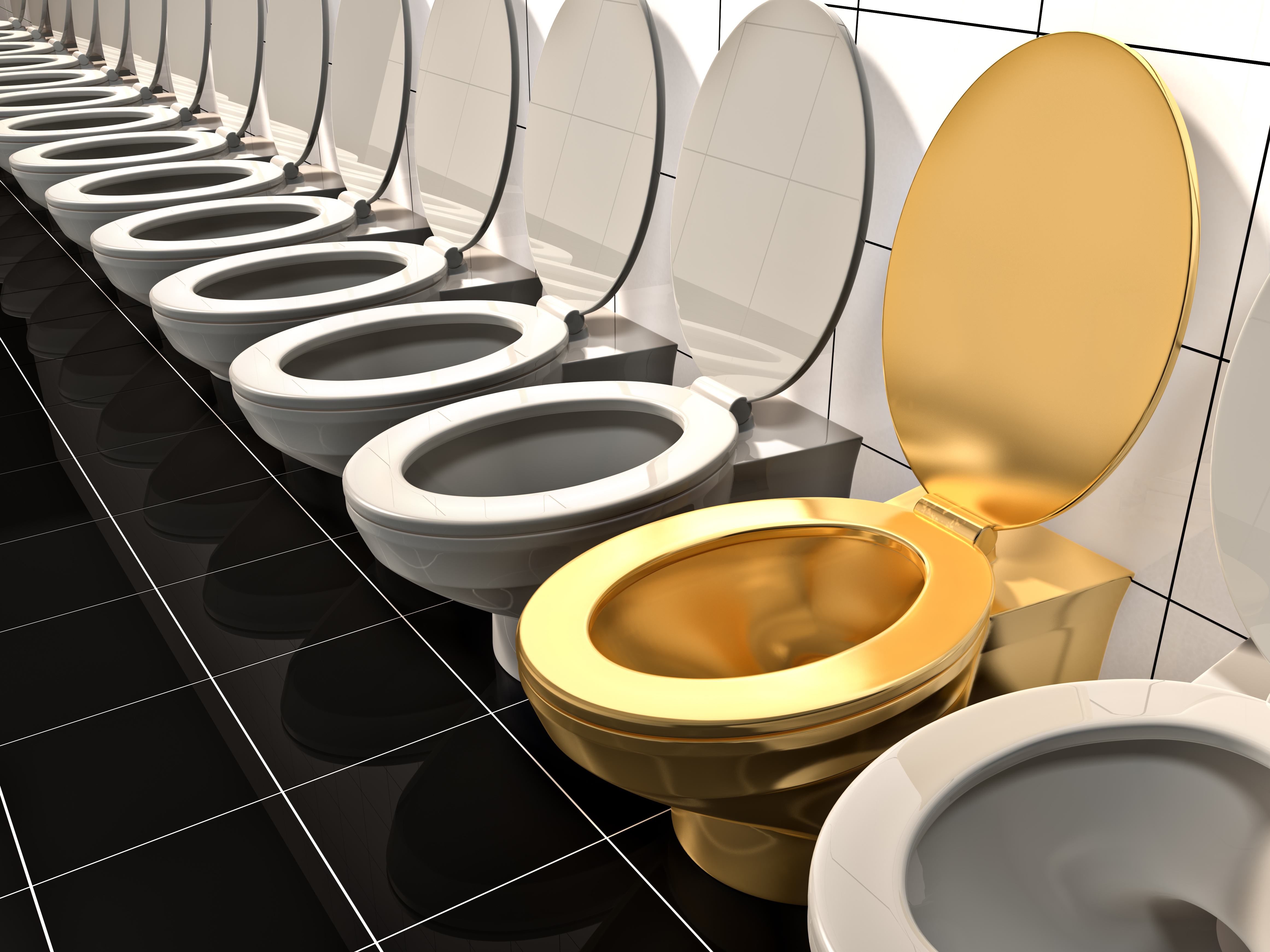 Would You Use An 18 Karat Gold Toilet What If It Was As