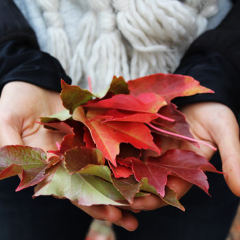 16 weird things everyone who's obsessed with fall has done at least once