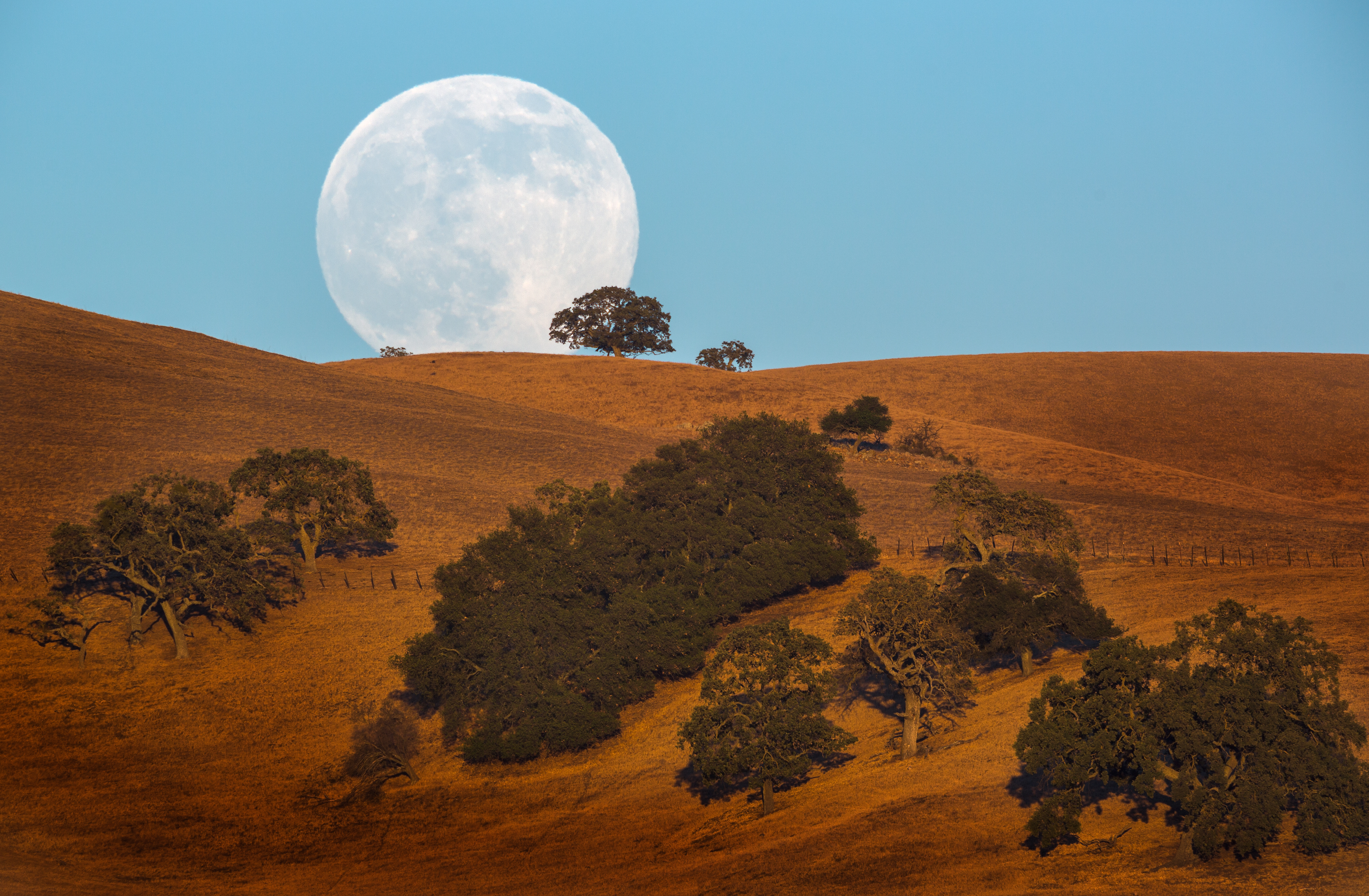 The history (and future) of the November 14th supermoon is purely fascinating