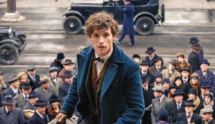 "Wait, did Newt Scamander actually have a cameo in the ""Harry Potter"" movies???"